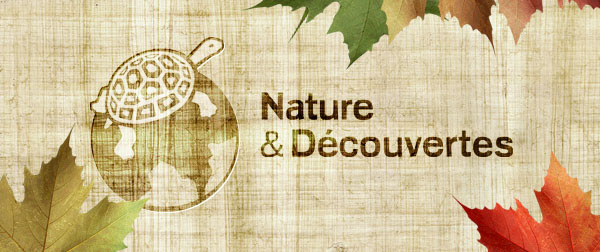 natures-et-decouvertes-20-conversion